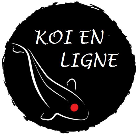 Ko en ligne sp cialiste de la vente en ligne de carpe ko for Vente de carpe koi en ligne